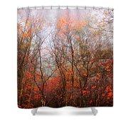 Autumn On The Mountain Shower Curtain