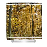 Autumn Out My Window Shower Curtain