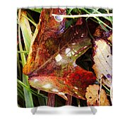 Autumn Palette Shower Curtain
