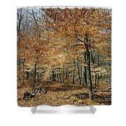 Autumn Paradise Shower Curtain