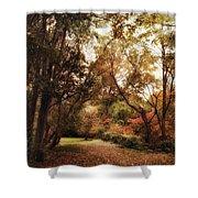 Autumn Passage II Shower Curtain
