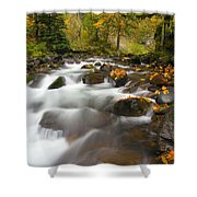 Autumn Passages Shower Curtain