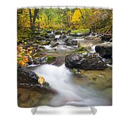 Autumn Passing Shower Curtain