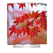 Autumn Pastel Shower Curtain