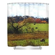 Autumn Pasture Shower Curtain