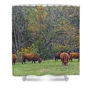 Autumn Pasture Shower Curtain
