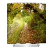 Autumn Path Shower Curtain