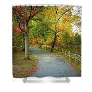 Autumn Path II Shower Curtain