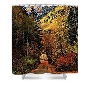 Autumn Path To Stewart Falls Shower Curtain