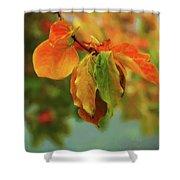 Autumn Persimmon Leaves Shower Curtain