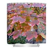 Autumn Pink 2 Shower Curtain