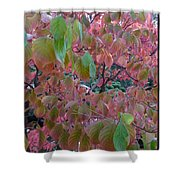 Autumn Pink Poster Shower Curtain
