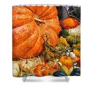 Autumn - Pumpkin - All Of My Relatives Shower Curtain