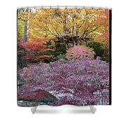 Autumn Purple Shower Curtain