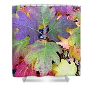 Autumn Rainbows Shower Curtain