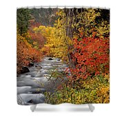 Autumn Rapids Shower Curtain
