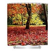 Autumn Reds Shower Curtain
