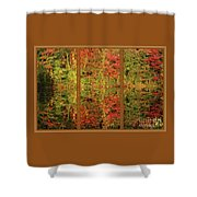 Autumn Reflections In A Window Shower Curtain