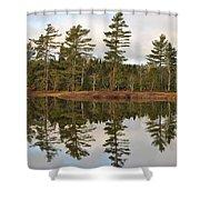 Autumn Reflector Shower Curtain