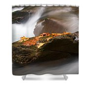 Autumn Resting Place Shower Curtain