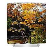 Autumn River Shower Curtain by Barbara Von Pagel