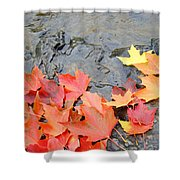 Autumn River Landscape Red Fall Leaves Shower Curtain