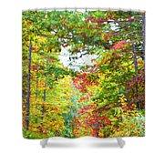 Autumn Road - Digital Paint Shower Curtain