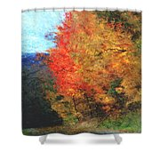 Autumn Roadside Shower Curtain