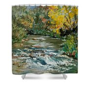 Autumn Rush Shower Curtain