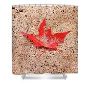 Autumn Sand Shower Curtain
