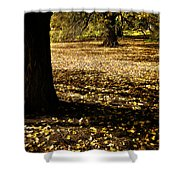 Autumn Scatterlings Shower Curtain