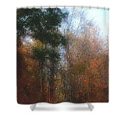 Autumn Scene 10-23-09 Shower Curtain