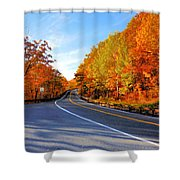 Autumn Scene With Road In Forest 2 Shower Curtain