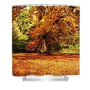 Autumn Scenery Shower Curtain