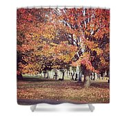 Autumn Serenity  Shower Curtain