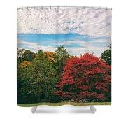 Autumn Skies Shower Curtain