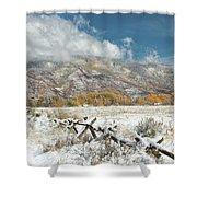 Autumn Snowfall In Aspen Shower Curtain