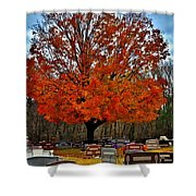 Autumn Somnolence  Shower Curtain