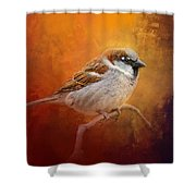 Autumn Sparrow Shower Curtain