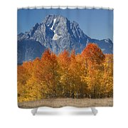 Autumn Splendor In Grand Teton Shower Curtain