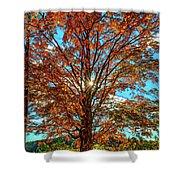 Autumn Star- Paint Shower Curtain