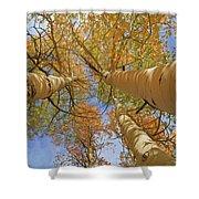 Autumn Straight Up Shower Curtain