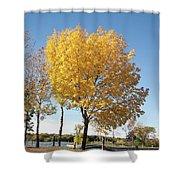 Autumn Sunshine Shower Curtain
