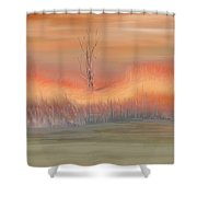 Autumn Swamp Shower Curtain