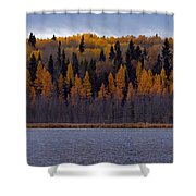 Autumn Tiers Shower Curtain