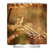 Autumn Tones Shower Curtain