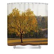 Autumn Tree At Sunset Shower Curtain