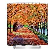Autumn Tree Lane Shower Curtain