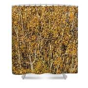 Autumn Tree Tangle Shower Curtain
