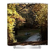 Autumn Trees 3 Shower Curtain